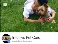 INTUITIVE PET CARE