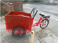 Electric cargo trike / tricycle bike (HASTING PICK UP ONLY)