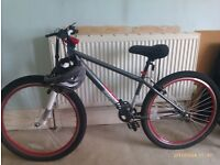 X Rated Mesh Dirt Jump Bike (Boys) Excellent Condition - hardly used.