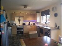 4 bed new build in ABERDEEN, exchange for 3 bed, PETERHEAD ONLY. 3 way swap considered.