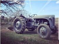 Ferguson ted20 grey fergie tractor