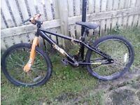 nountain bike