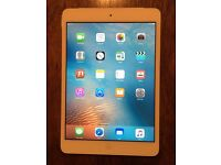 iPad mini 16gb wifi and cellular (sim ee)