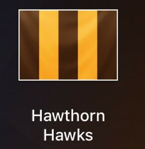 Crows Vs Hawks Adelaide CBD Adelaide City Preview