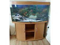 4ft Jewel Tank