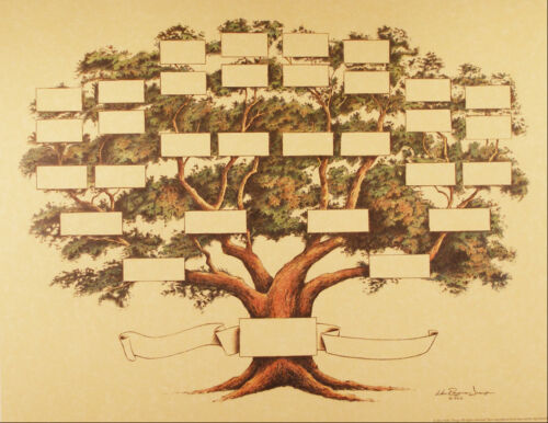 """Family Tree Chart 5 to 6 Generations Genealogy, 14x18"""" Gold Color"""