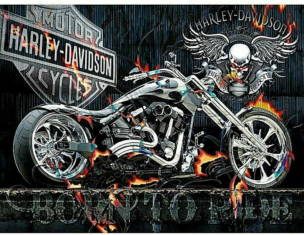 5D Diamond Painting Kit Harley Davidson Born to Ride Motorcycle Shiny By Number Art Supplies