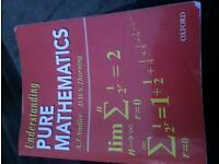 Understanding pure mathematics