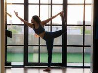 Online/Live Yoga Studio / Meditation Private Classes by Certified Yoga Tutor Teacher for Beginners