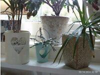 set of 4, enamel / ceramic planters / candle holders