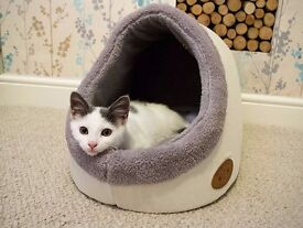 Luxury cat bed by Banbury & Co. Cosy and warm