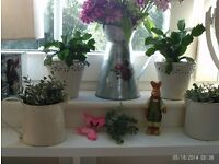 set of five planters