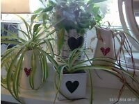 4 heart design planters / candle holders