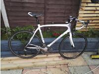 Ribele Bianca full carbon frame very good condition