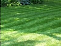 HD garden maintenance and landscaping