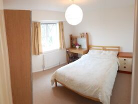 Furnished double room in spacious house-share near Ashton Court