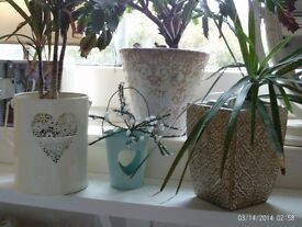 4 planters / candle holders