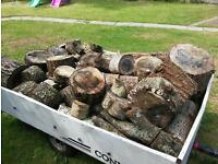 Winter logs for sale at least 2 trailers full 6x4ft