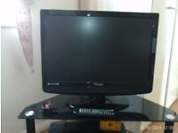 "19""Portable Flat Screen TV"