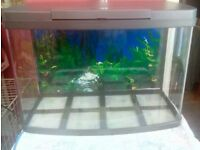 Tropical fish tank 64 litres ( good for someone starting out) £120 or Ono