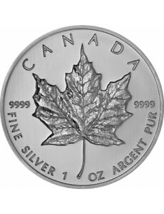 Silver Coins - Maple Leaf & Buffalo coins $2.50 above spot price
