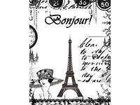 18 years experience Native French Tutor for all levels