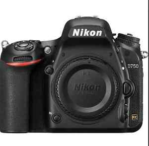 Nikon D750 10/10 only 900 shutter count with Nikon 50mm1.4G