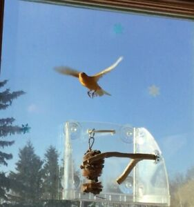 (Personal Bird Sanctuary for Canaries and Finches)