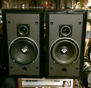 CERWIN VEGA D-1 SPEAKERS