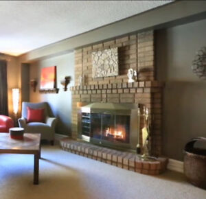 Elegant brass and faceted glass fireplace hearth doors