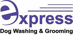 Express Dog Washing & Grooming Labrador Gold Coast City Preview