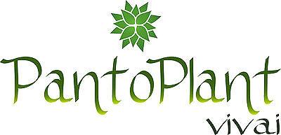 pantoplant vivai