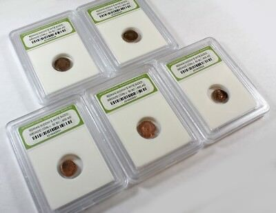 Slabbed Group Of 5 Ancient Roman Widows Mite Sized Bronze Coins C 50 Bc   400 Ad