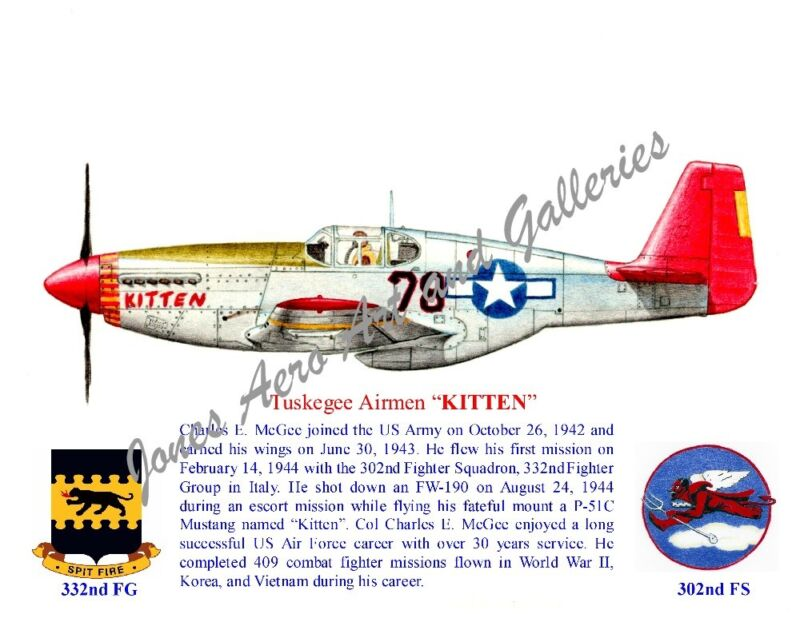 "Tuskegee Airmen Col Charles McGee P-51 Mustang ""Kitten"" Print by Willie Jones Jr"