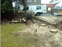YOUR GARDEN NEEDS ME , hedge cutting , tree services ,