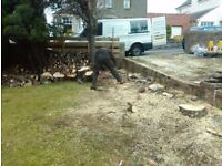 YOUR GARDEN NEEDS ME fencing , hedge cutting , tree services etc.