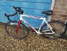 "28"" Road Racing Bike ""piccadilly"" White-red 14 Speed Frame 55 Cm"