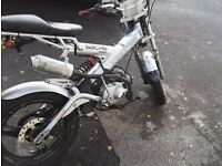 Rare sachs madass! 50cc with 88kit and other upgrades!