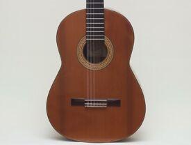 Martin Fleeson Classical guitar