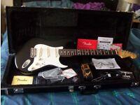 Fender American Standard Stratocaster 2014 (60th Anniversary)