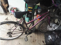 Male and female mountain bikes, both in need of inner tubes