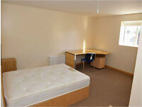 5 bedroom private halls to rent