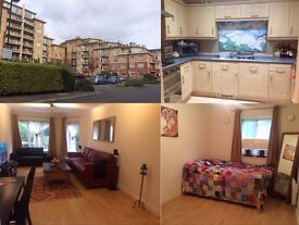 1 stunning furnished double bedroom in 2 bedroom flat first floor with separate bathroom