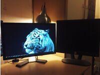 Dell monitors bundle