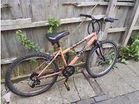 Cheap bike for sale