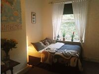 Central, quiet and cozy Double room - Student and Holiday Short term, SEPT and OCT dates available