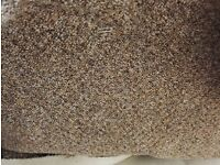 FREE CARPET TO GIVE AWAY