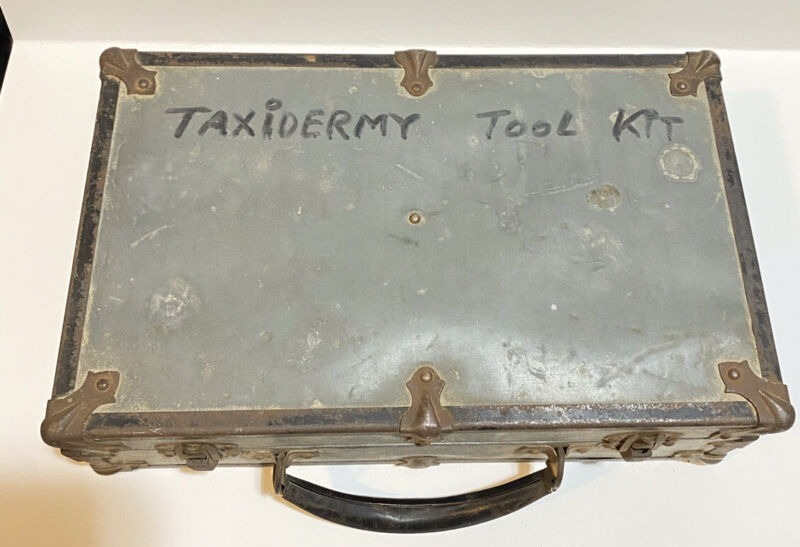 Vintage Taxidermy Surgical Kit