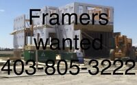 Experienced Framers Wanted