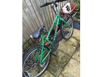 Raleigh Gensis Special Edition 10-speed bike. 24-inch wheels bicycle